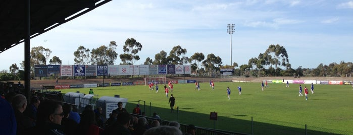 Knights Stadium is one of Soccer.