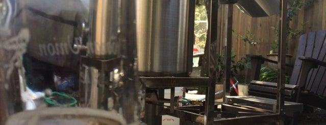 Elizabeth Street Brewery is one of SF Bars.