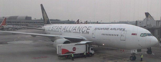 Gate E11 is one of SIN Airport Gates.