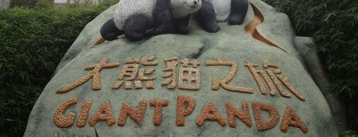Giant Panda Adventure 大熊貓之旅 is one of Places I've been to....