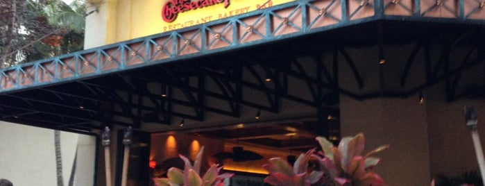 The Cheesecake Factory is one of Bakery I like.