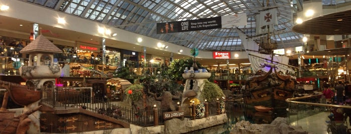 West Edmonton Mall is one of Best places in Edmonton, Canada.