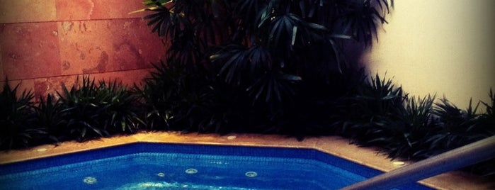 Willow Stream Spa is one of Acapulco.