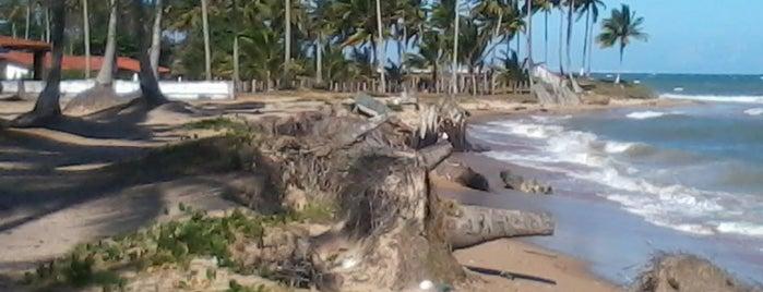 Ilha de Itaparica is one of DANIEL.