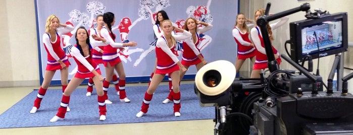 Ледовый дворец «Витязь» is one of JYM Hockey Arenas TOP100.
