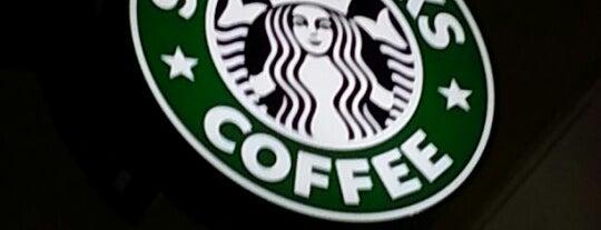 Starbucks is one of Last visit 2012.