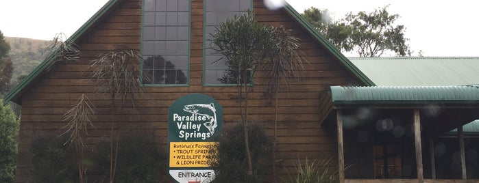 Paradise Valley Springs is one of Fun Group Activites around New Zealand.