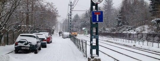 Völgy utca (56, 56A, 59B, 61) is one of Budai villamosmegállók.
