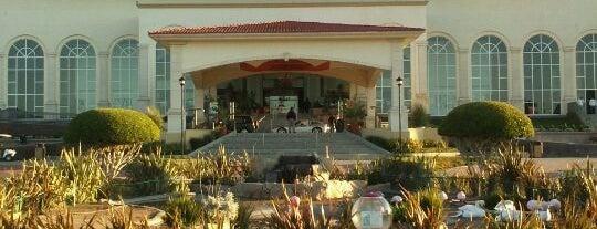Hipodromo Caliente is one of He estado aqui.
