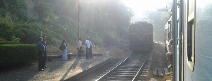 Kadigamuwa Railway Station is one of Railway Stations In Sri Lanka.