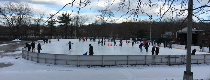 Clove Lakes Park is one of Top Ice Skating Rinks in NYC.