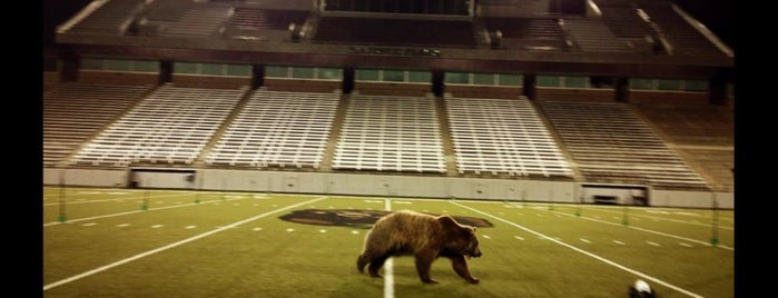 Washington-Grizzly Stadium is one of Stadiums.