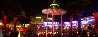 Surrender Nightclub is one of Vegas Nightlife!.