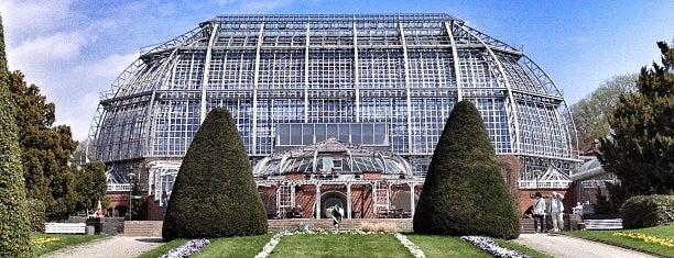 Botanisches Museum is one of My Berlin.
