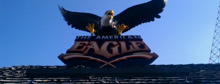 American Eagle is one of ROLLER COASTERS.