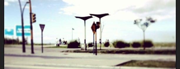 Paseo de la Costa Gral. Manuel Belgrano is one of pequeños placeres.