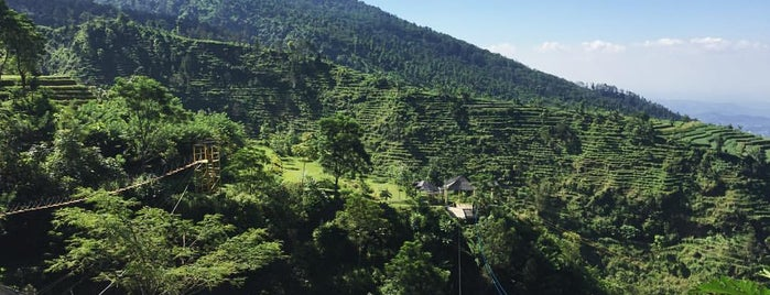 Umbul Sidomukti is one of Must-visit Great Place in Ambarawa-Salatiga.
