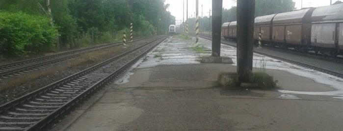 Železniční stanice Albrechtice u Českého Těšína is one of Linka S1/R1 ODIS Opava východ - Český Těšín.