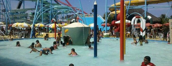 Veneza Water Park is one of Turistando em Pernambuco/Tourism in Pernambuco.