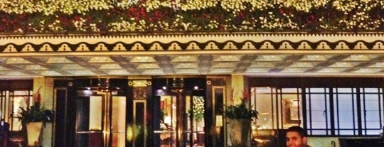 The Dorchester is one of M!.