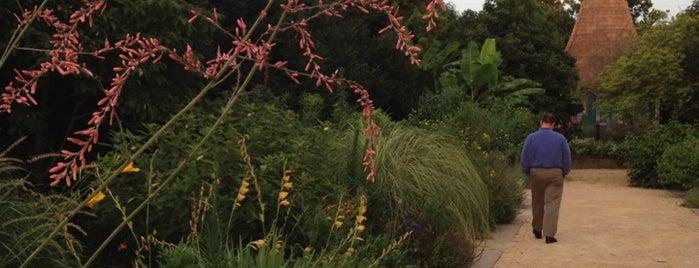 JC Raulston Arboretum is one of Raleigh's Best Parks, Greenways & Gardens.