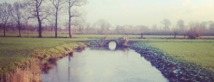 Natuurgebied Rhijnauwen is one of Interesting Places.
