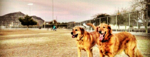 Rose Mofford Dog Park is one of PHX Parks in The Valley.
