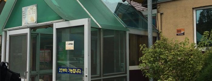 벽오동 is one of food.