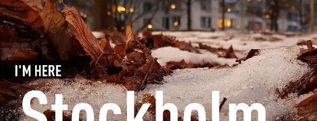 Friskis & Svettis Ringen is one of Friskis och Svettis (workout/gym) Stockholm.