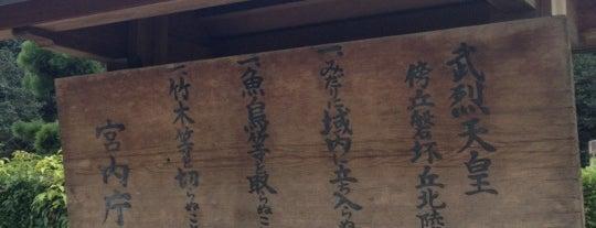 武烈天皇 傍丘磐坏丘北陵 is one of 天皇陵.