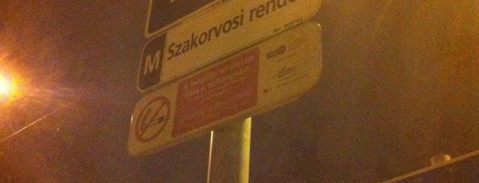 Ferencvárosi rendelőintézet (51, 51A) is one of Pesti villamosmegállók.