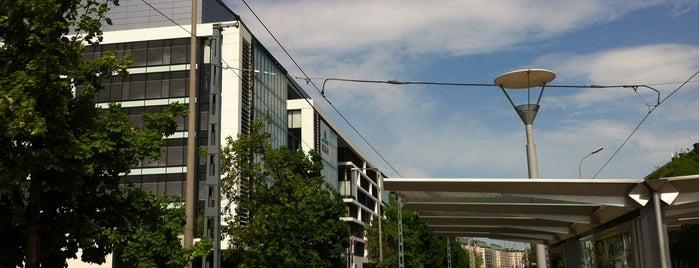 Milleniumi Kulturális Központ (2, 24) is one of Pesti villamosmegállók.