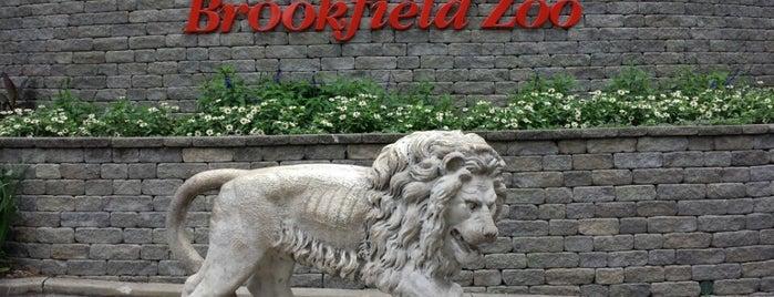 Brookfield Zoo is one of favorites.