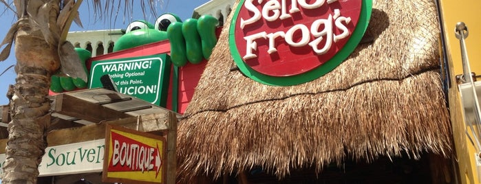 Señor Frog's is one of Que hacer: City Express Playa del Carmen.