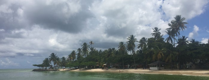 Buccoo Bay is one of Tobago.
