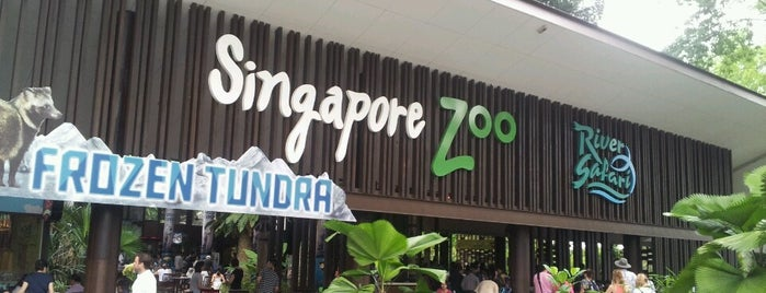 Singapore Zoo is one of Attractions to Visit.