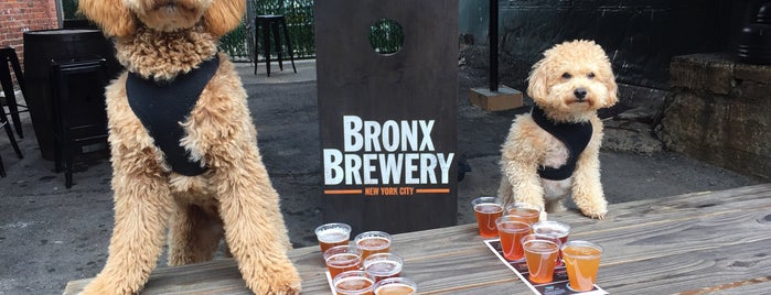 The Bronx Brewery is one of Brooklyn Pour Breweries 2012.