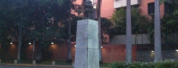 Campo Alegre is one of Plazas, Parques, Zoologicos Y Algo Mas.