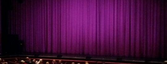 Van Wezel Performing Arts Hall is one of Sarasota #4sqCities.