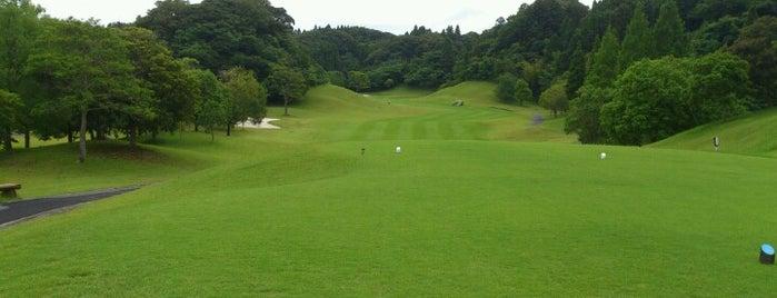 大多喜城ゴルフ倶楽部 is one of Top picks for Golf Courses.
