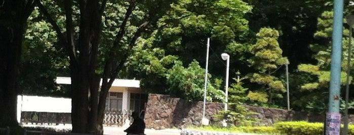 Harajuku Gate - Yoyogi Park is one of 公園.