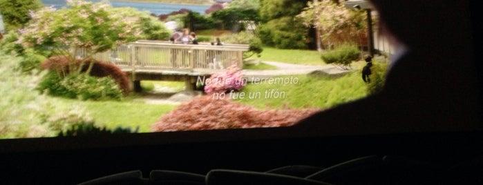 El Cine is one of Donde pecar.