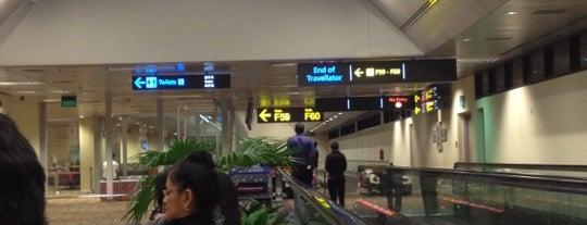 Gate F59 is one of SIN Airport Gates.