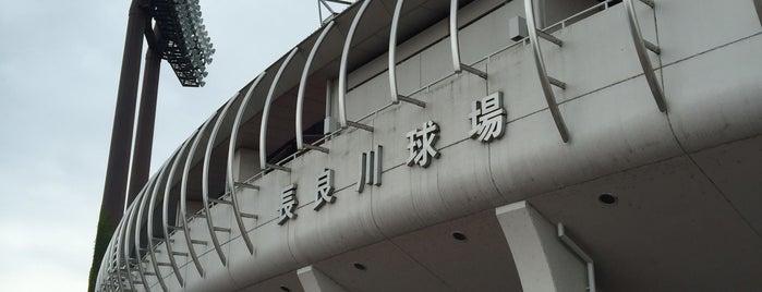 長良川球場 is one of Japan Triple Play.