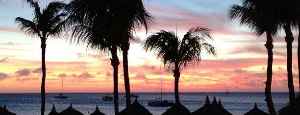 Marriott Aruba Resort & Stellaris Casino is one of My Favorites.