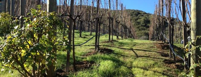 Ventura Wineries