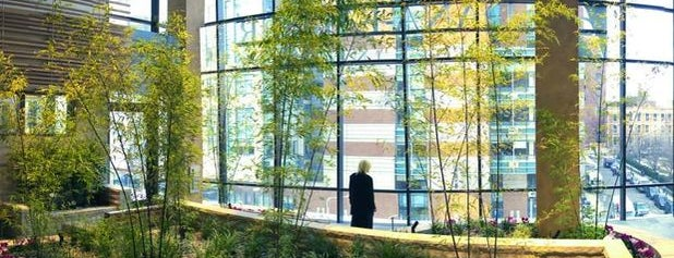 Dana-Farber Cancer Institute is one of Longwood Medical Area.