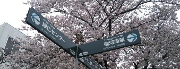 静香ちゃん [レリーフモニュメント] is one of etc3.