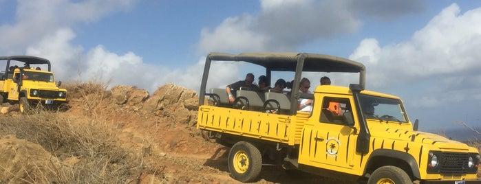 De Palm Tours is one of Aruba.