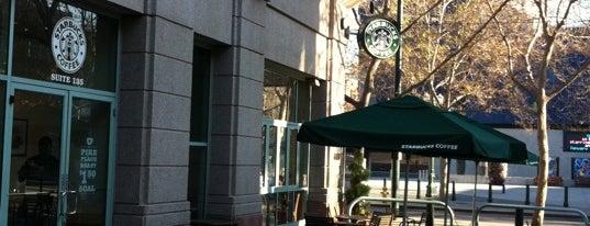 Starbucks is one of SJSU Life.